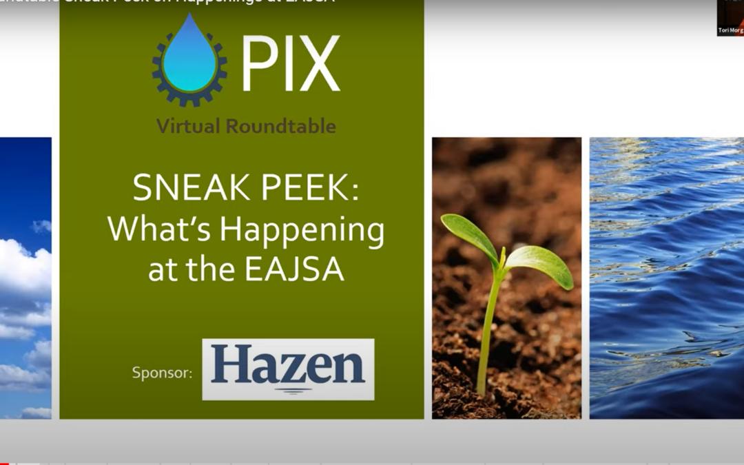 LVPIX Roundtable Sneak Peek on Happenings at EAJSA